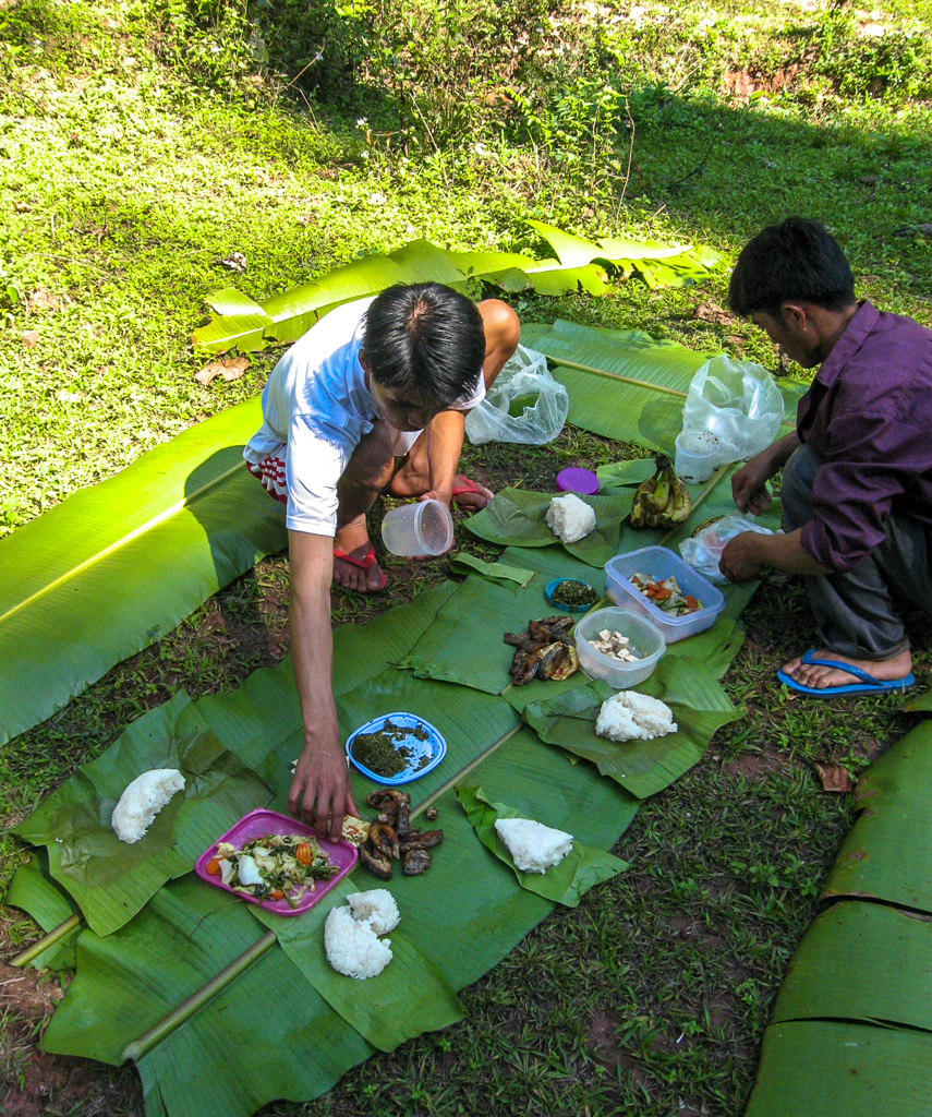 Picnic jungle trek Laos