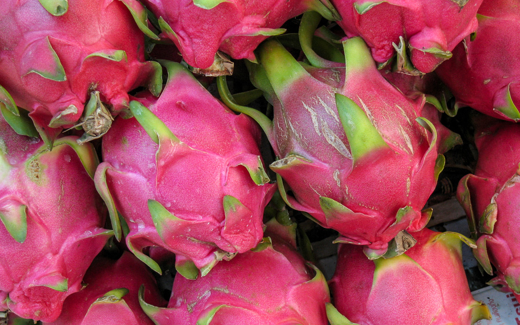 Dragon fruit Laos