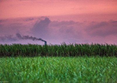 Cuba Sugar Mills